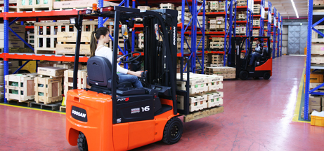 Cushion Tire Forklift Rentals